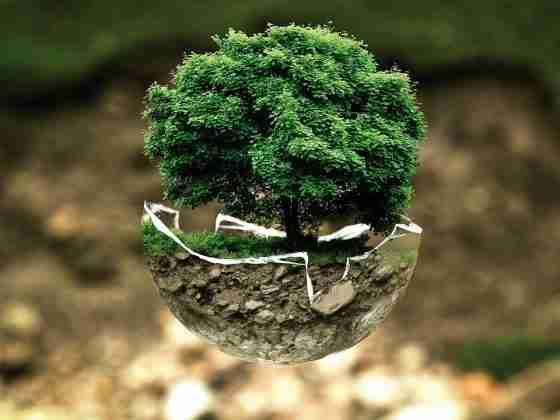 ograniczenie ilości śmieci i odpadów